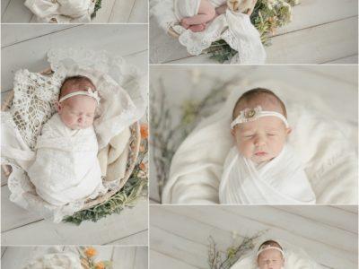 Huntsville Newborn Photographer – Dalton Newborn Session